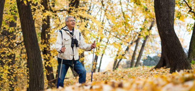 Comment savoir si on cotise pour la retraite ?